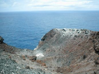 One of the larger Booby colonies