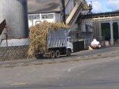 Cane Truck