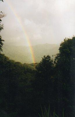 Wet rainbow