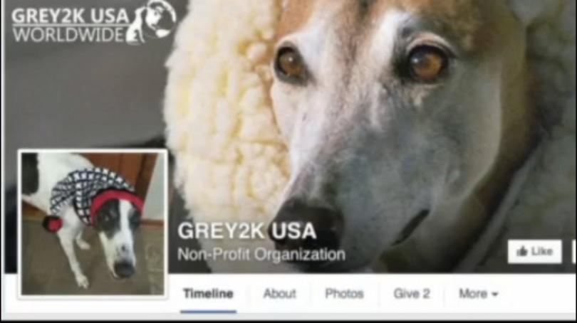 Grey2K USA Visits Freeport