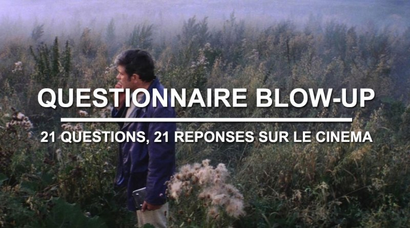 Questionnaire Blow-Up