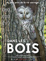 Affiche de Dans les bois (2019)