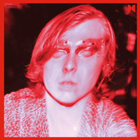 Ty Segall: The Hill