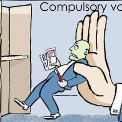 Гласуването било дълг по Конституция?! Не, не е!