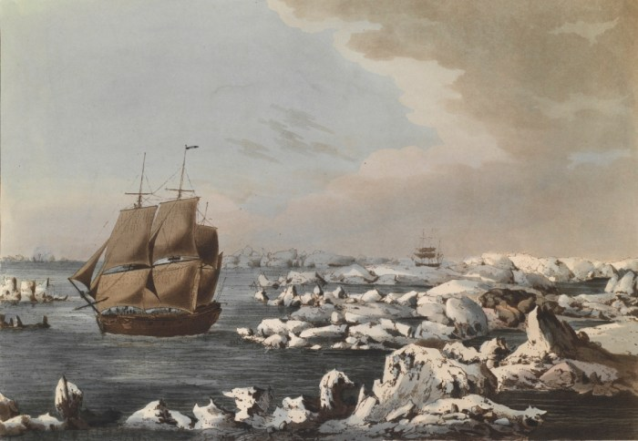 Issues at Play during Captain Cook's Expedition are still Relevant Today