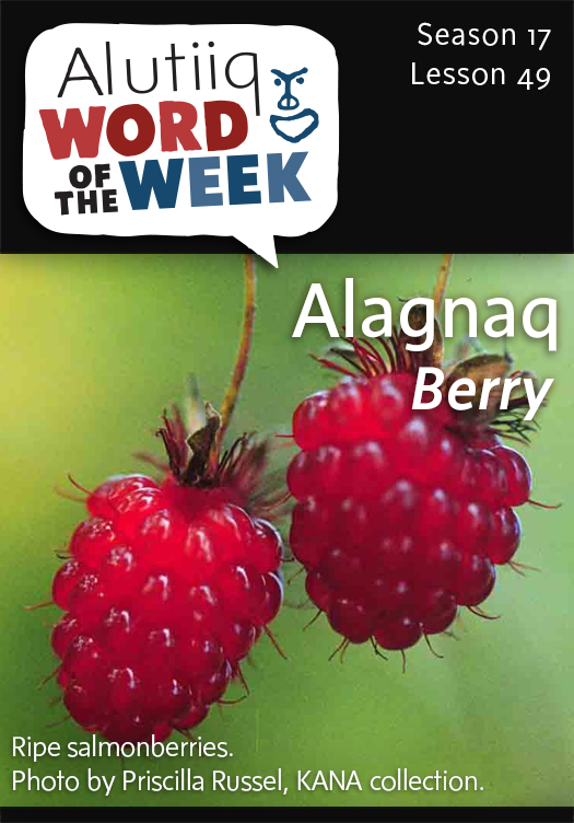 Berry-Alutiiq Word of the Week-May 31