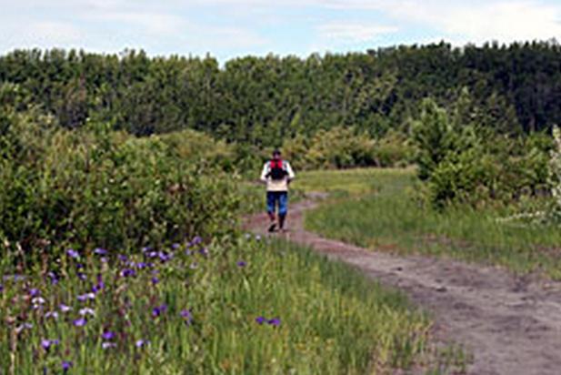 Habitat Concerns Prompt Restrictions on Cottonwood Creek ATV Trail