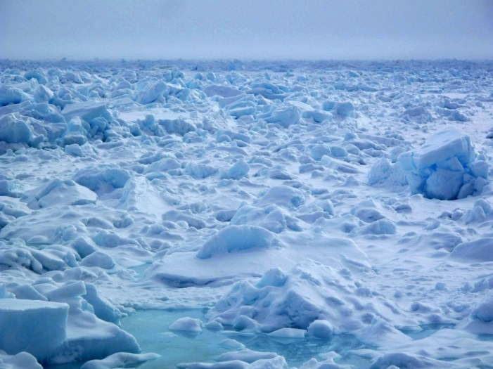 The Case for Rallying Around Sea Ice