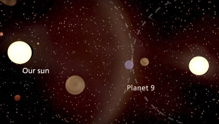 Theft Behind Planet Nine in our Solar System