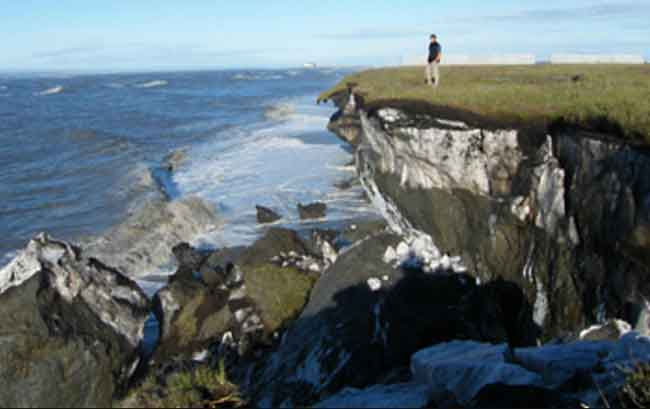 NSF Awards $5.6 Million to Establish New Arctic Long-Term Ecological Research Site