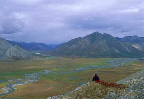Lawsuit Aims to Block Drilling in Arctic National Wildlife Refuge