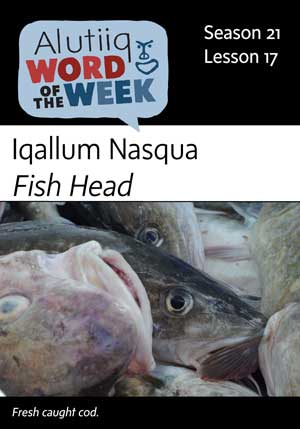 Fish Head-Alutiiq Word of the Week-October 21st