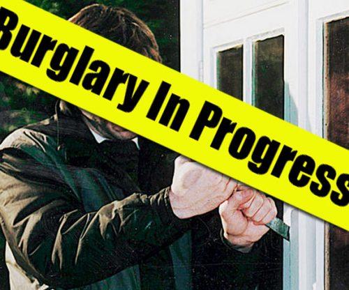 Vacationing Fairbanks Man Foils Burglary