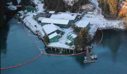 Coast Guard Responds to Oil Sheen in Kitoi Bay