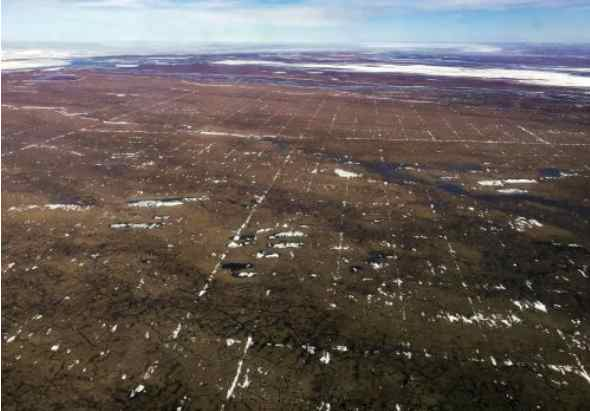 Proposed seismic surveys in Arctic Refuge likely to cause lasting damage