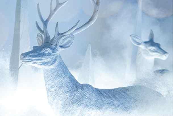 Polar Bazaar 2020 / now through Nov. 30