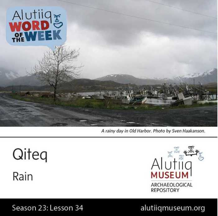 Rain-Alutiiq Word of the Week-February 14th