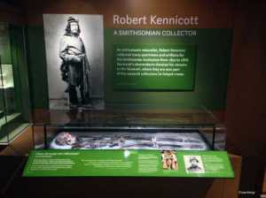 The skeleton of Robert Kennicott, a 19th century collector for the Smithsonian, which is now part of a Smithsonian collection. (Courtesy Smithsonian National Museum of Natural History)