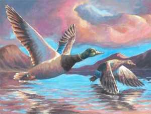 """""""Ducks at Dusk"""" by Alain Soltys-Gray"""