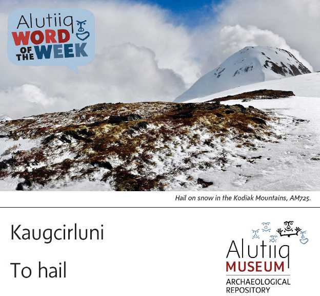 To Hail-Alutiiq Word of the Week-August 29th
