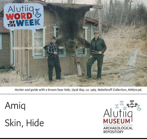 Skin/Hide-Alutiiq Word of the Week-October 10th