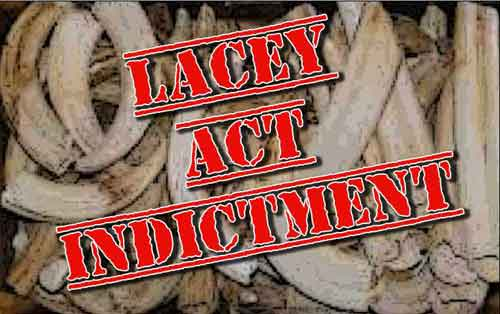 Skagway Man Indicted on 10 Counts of Lacy Act Violations