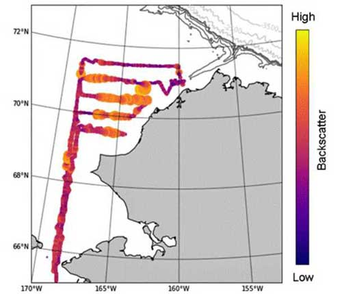 Bering Sea is the Focus of a New NOAA Effort to Deliver Science to Fisheries Managers
