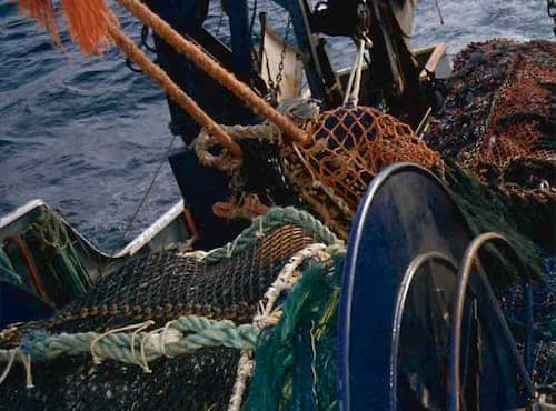Adak, Groundfish Trawlers at Odds on P-Cod Processing