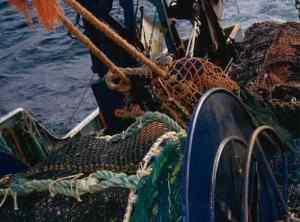 Trawler hauling gear. Image-ADF&G