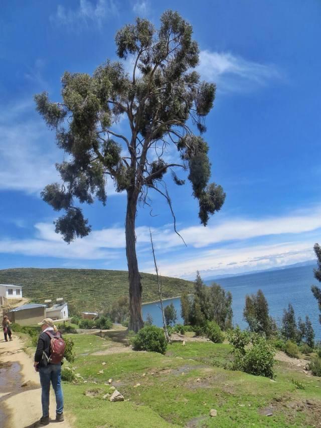 Teimme päiväretken parin tunnin matkan päässä olevalle Isla del Solille; komeita näköaloja ja paljon turisteja.