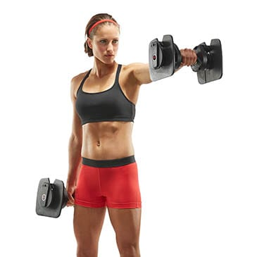 Bowflex ST560 Dumbbells (Two Pairs)