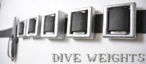 dive-weights-header