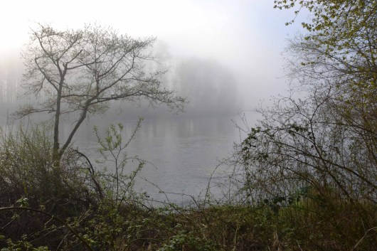 Snohomish River in the Fog
