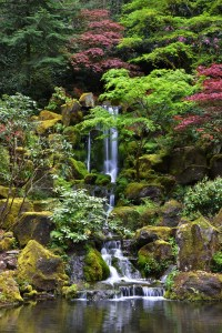 Waterfall at Japanese Garden