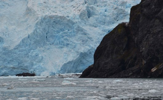 Holgate Glacier Upclose