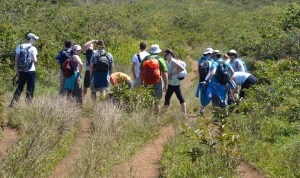 Group Hiking to a Volcano