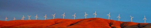 Windmill Farm