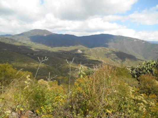 View NE toward Cuajimoloyas