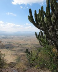 Tlacolula Valley
