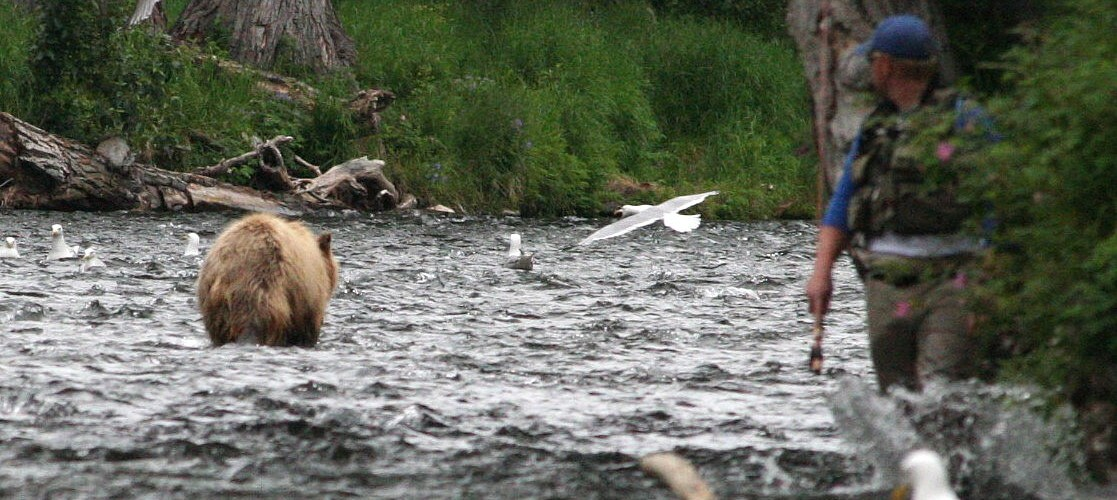 Fishing with the bears and how to survive it