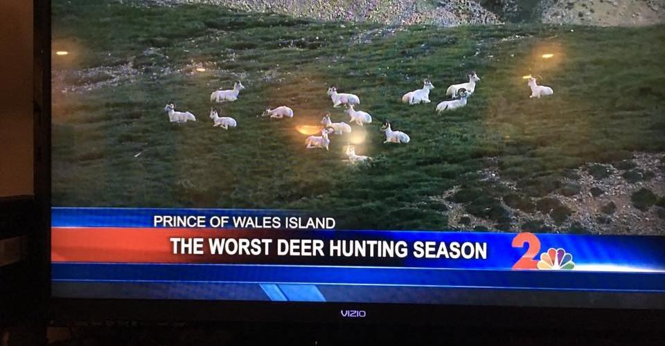 Good deer footage is hard to find?
