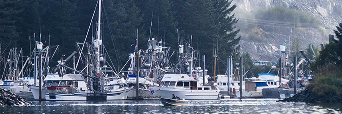 Boats in Kodiak harbor