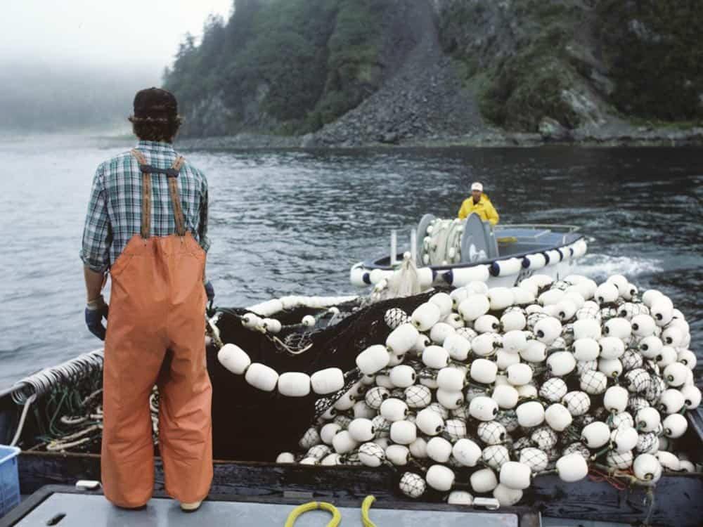 Man reeling in a fishing net