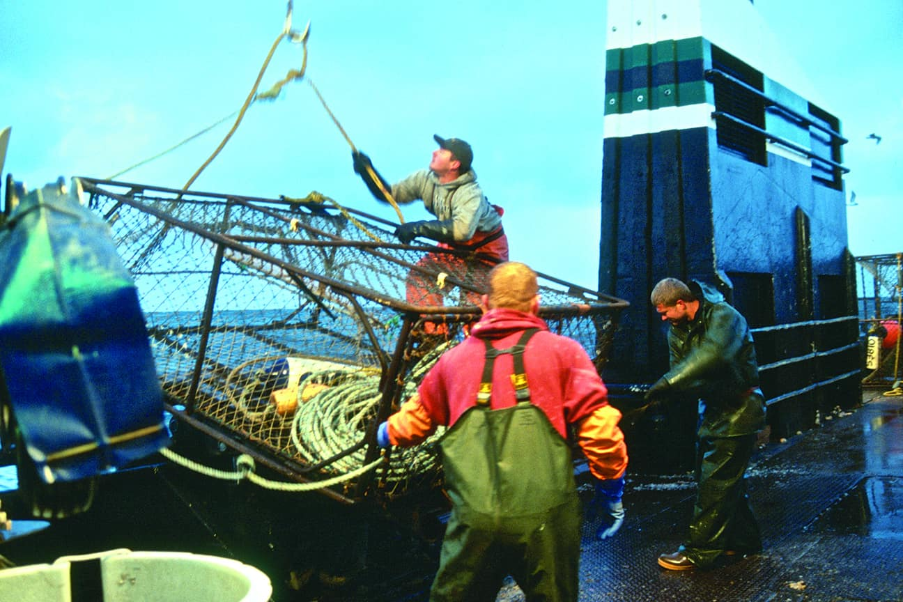 red king crab fishing
