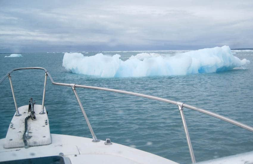 Bergy-Bits-in-Icy-Bay-3252