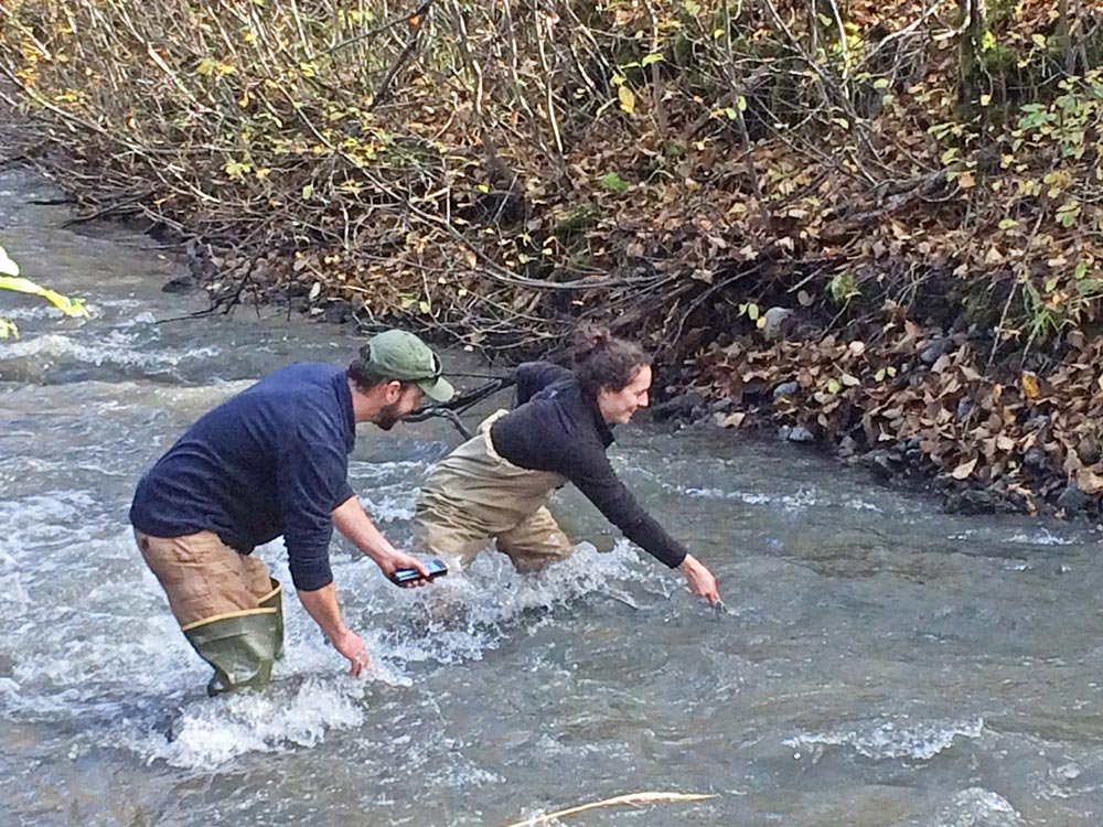 A man and woman wading in a stream