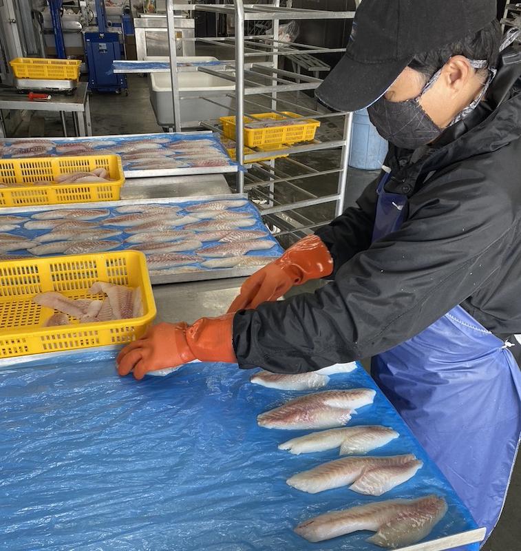 photo of man processing fish