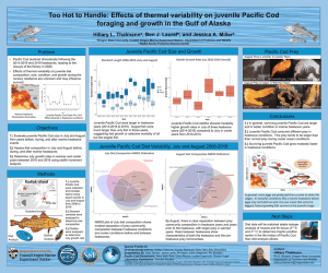 Thumbnail of scientific poster concerning effects of thermal variability on juvenile pacific cod foraging and growth in the gulf of alaska