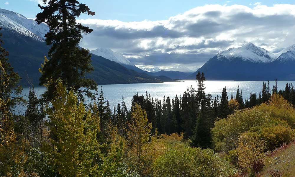 Yukoner Half-Day Tour