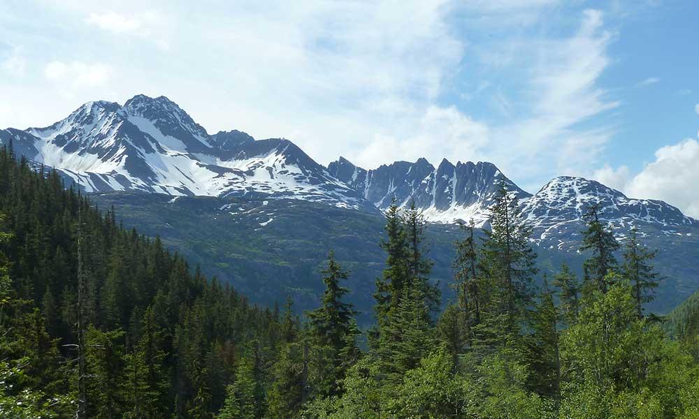 White Pass Summit and City Tour